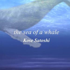 Whale_jaketsmall